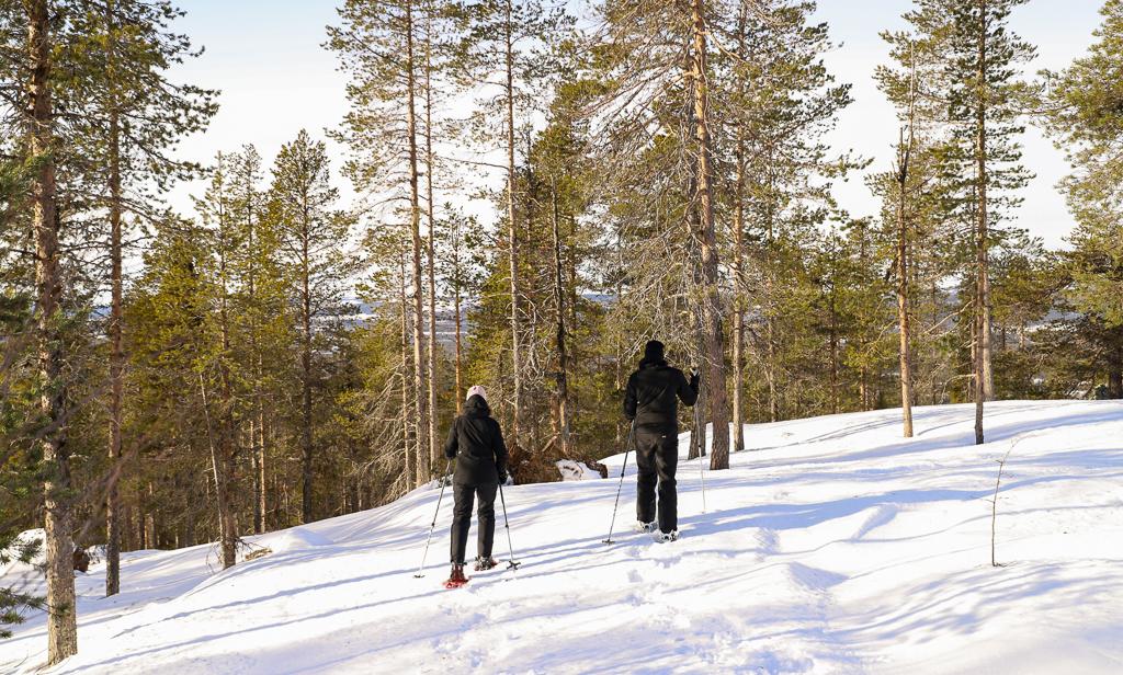 Snöskovandring i Storuman Lapland