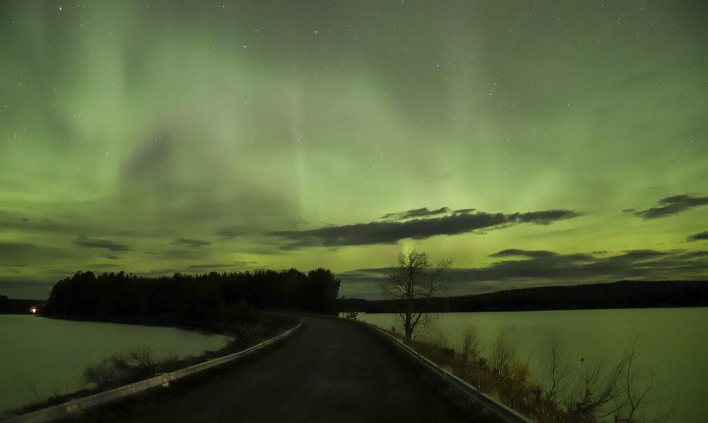 Centrumnära norrskensjakt i Storuman Lapland